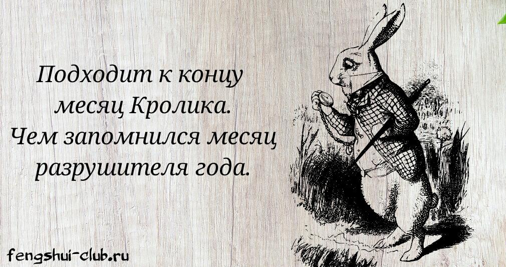wood-2142216_1280